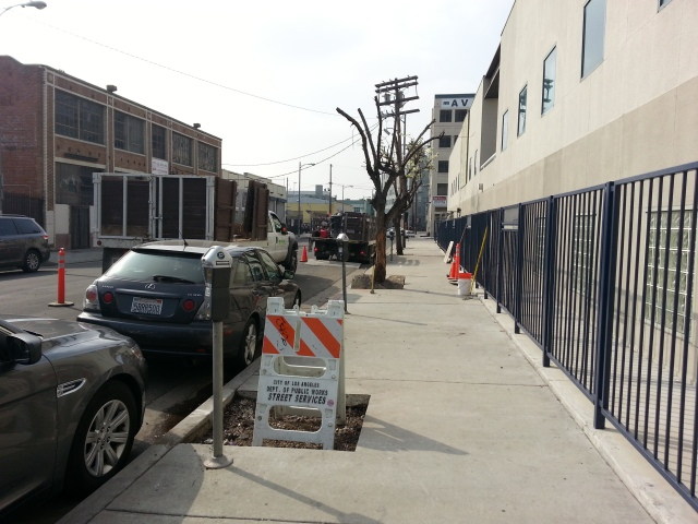 This is Omar St.- short and sweet. I love this street. Newly cut concrete wells will soon have trees!